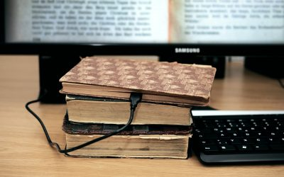 Digital humanities: a whim or a (bibliographical) routine?
