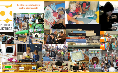 Professional self-confidence in reading literacy promotion